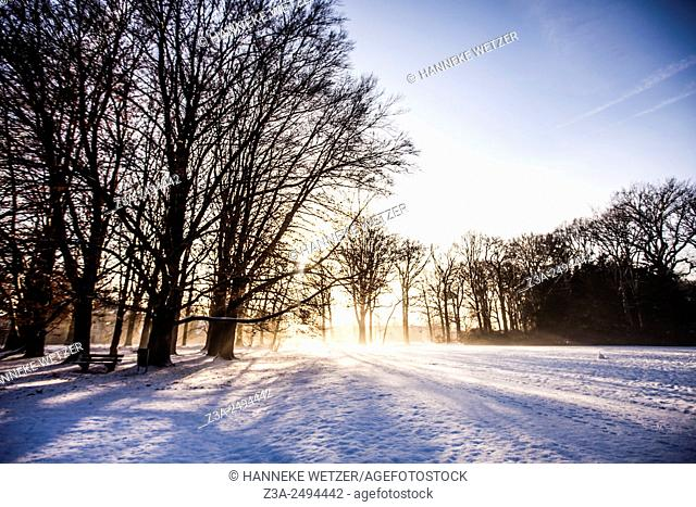 Romantic snow landscape in the Netherlands, Europe