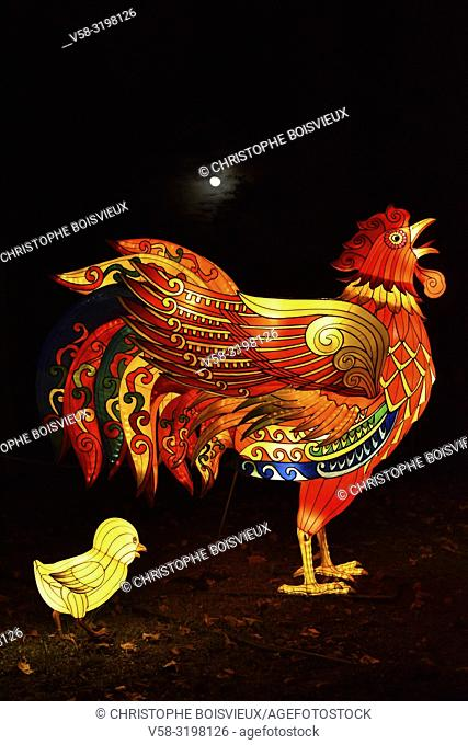 France, Tarn, Gaillac, Festival des lanternes (Chinese Lantern Festival), Illuminated cock and chick. . The festival celebrates Chinese culture originating from...