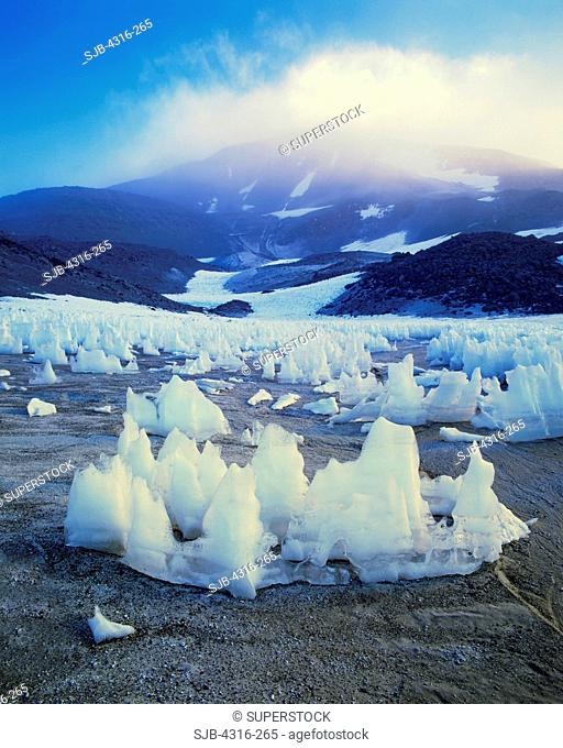 Ancient Nieve Penitente Ice Formations Stand in the Shadow of Ojos Del Salado, the World's Highest Volcano