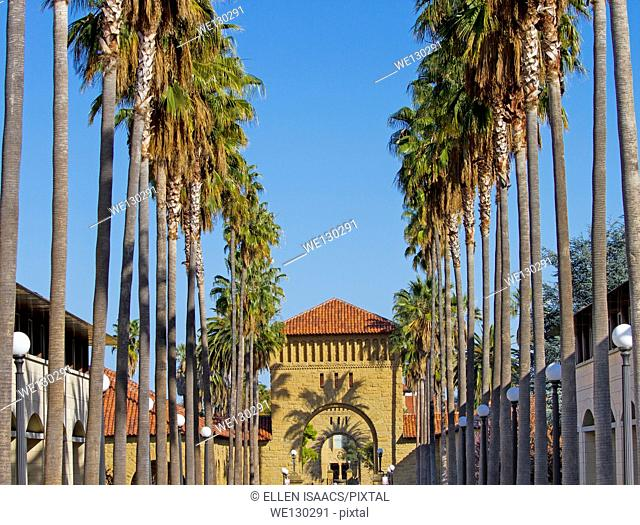 Shadows from palm trees casting shadows on arches leading to Quad on Stanford University campus