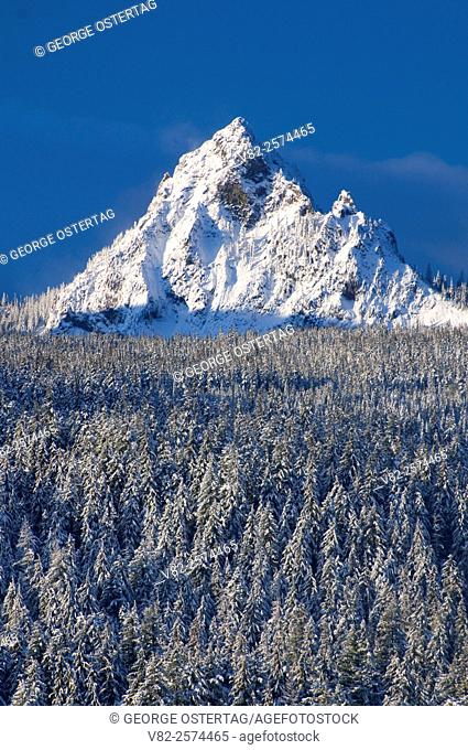 Mt Yoran from Oregon Highway 58, Willamette National Forest, Oregon