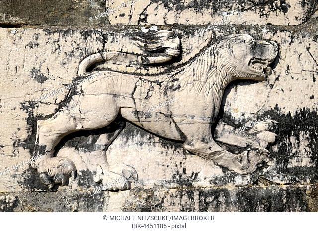 Relief of a lion on ruins of St. Nicholas Monastery Church, Mesopotam, Vlora, Albania