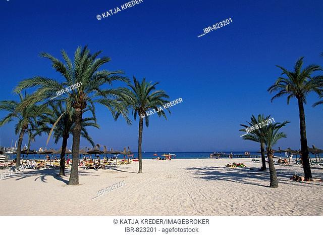 Alcudia Beach, Majorca, Balearic Islands, Spain, Europe
