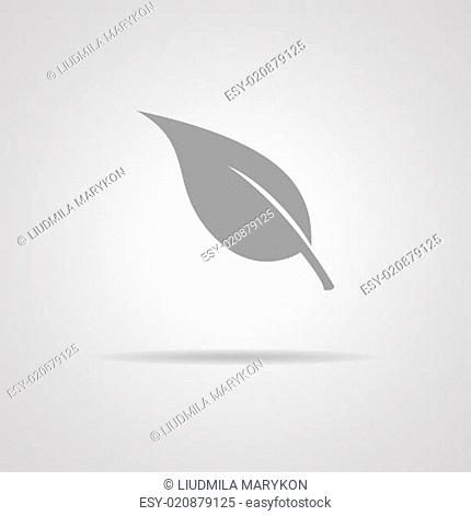 Leaf sign icon Vector