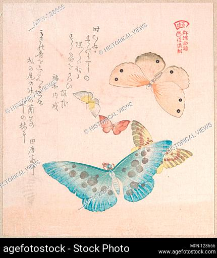 Various Moths and Butterflies. Artist: Kubo Shunman (Japanese, 1757-1820); Date: 19th century; Culture: Japan; Medium: Part of an album of woodblock prints...