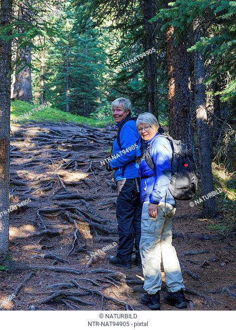 Two female hikers walking through forest, Jaspr National Park, Canada