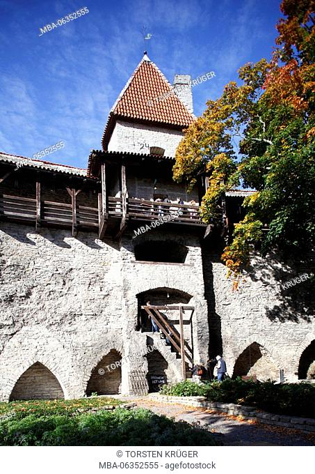 maids tower, tower of the city wall, museum, Tallinn, Estonia, Europe