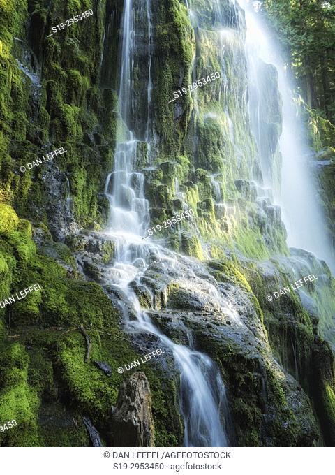 Proxy Falls Oregon. USA