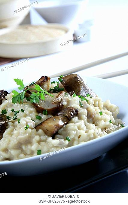Wild mushrooms risotto