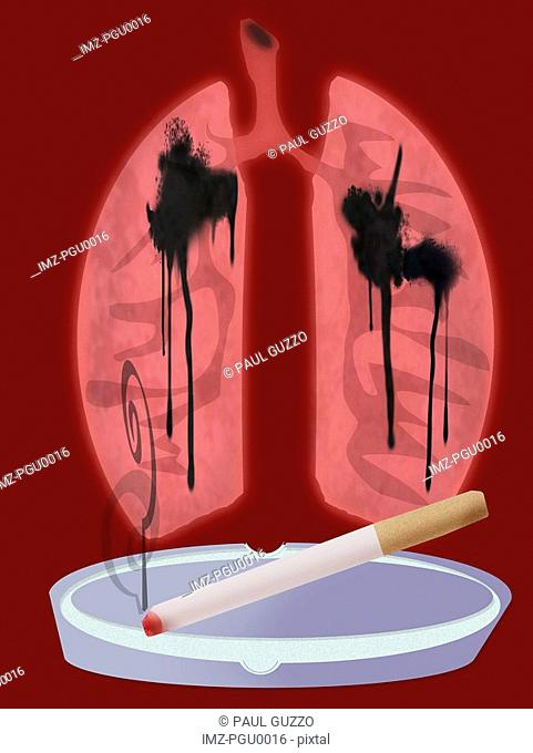 Cigarette on with lungs and tar
