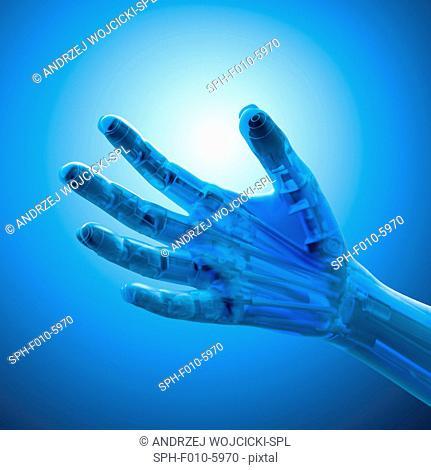 Artificial hand, computer artwork
