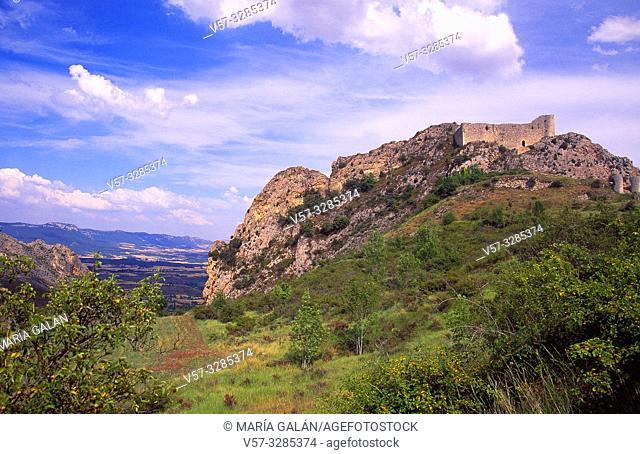 Castle. Poza de la Sal, Burgos province, Castilla Leon, Spain