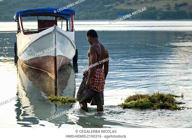 Indonesia, Lesser Sunda Islands, Alor archipelago, Kangge Island, man bringing back seaweed Kappaphycus sp. for carrageenan