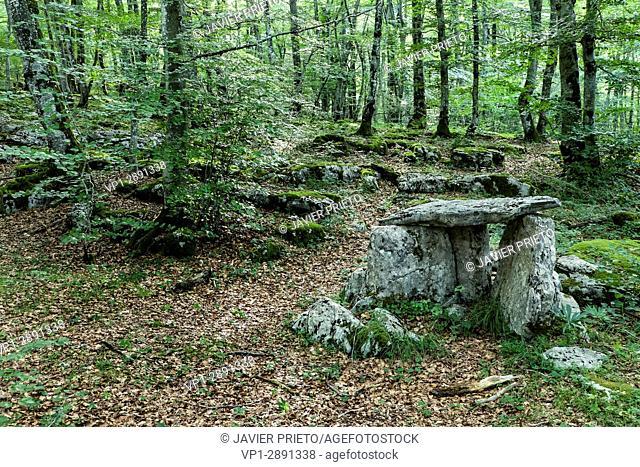 Small stone huts where the wolf hunters hid. Beech Mount of Santiago. Reconstruction of the traditional lobera of the Monte Santiago Natural Monument