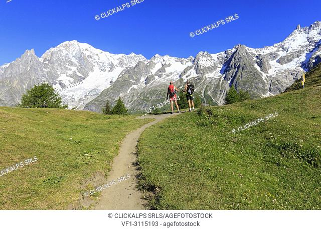 Trail runners enjoy the Mont Blanc panorama. Bertone Hut, Ferret Valley, Courmayeur, Aosta Valley, Italy, Europe