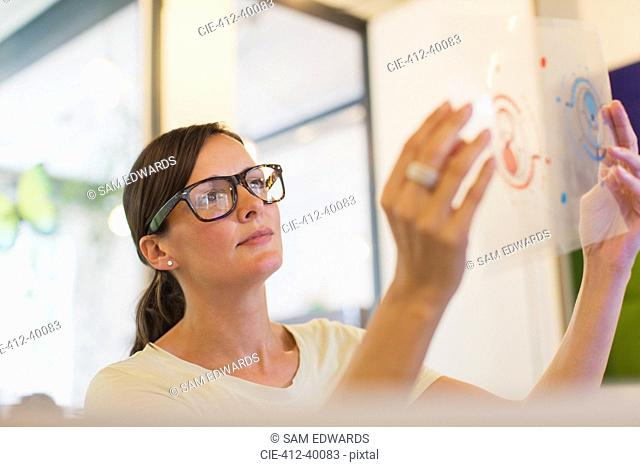 Designer examining transparency diagram in office