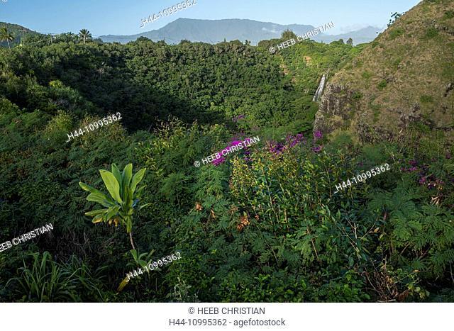 USA, Vereinigte Staaten, Amerika, South Pacific, Hawaii, Kauai, Lihue, Opaekaa Falls