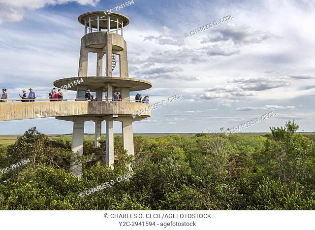 Everglades National Park, Florida. Tourists at the Shark Valley Viewing Tower
