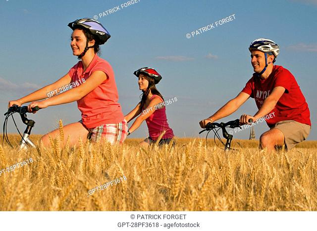 BICYCLE TOURISTS IN A WHEAT FIELD NEAR CHARTRES, EURE-ET-LOIR 28, FRANCE
