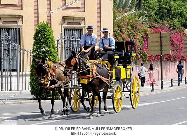 Horse-drawn carriage, Feria de Abril, Seville, Andalusia, Spain, Europe