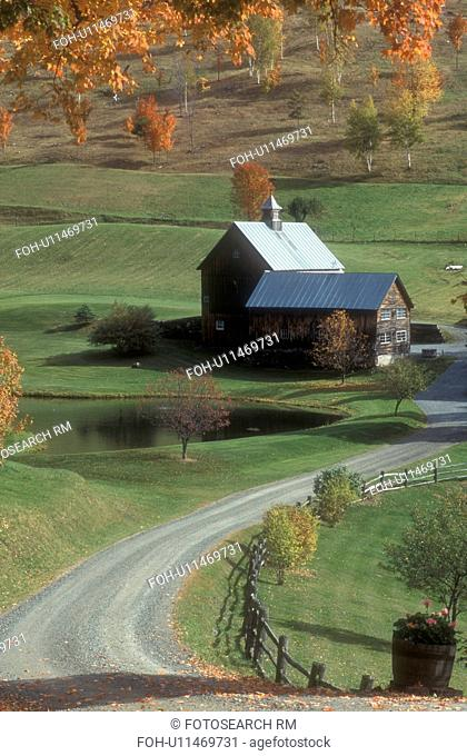 farm, fall, South Pomfret, VT, Vermont, Dirt road leads down to Sleepy Hollow Farm in autumn