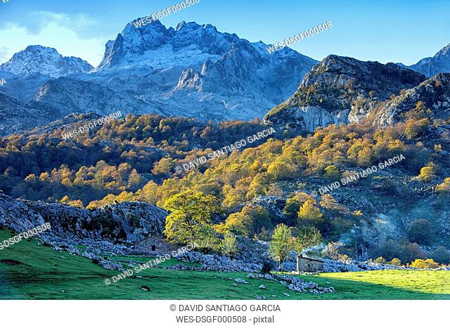 Spain, Autumn at Picos de Europa National park