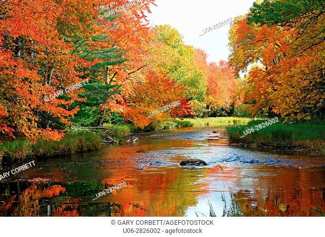 Mersey River, kejimkujik National Park, Nova Scotia, Canada in the fall color