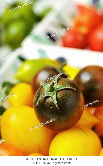 Tomatoes Lycopersicon esculentum