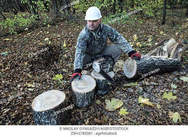 Russia. Belgorod region. Firewood