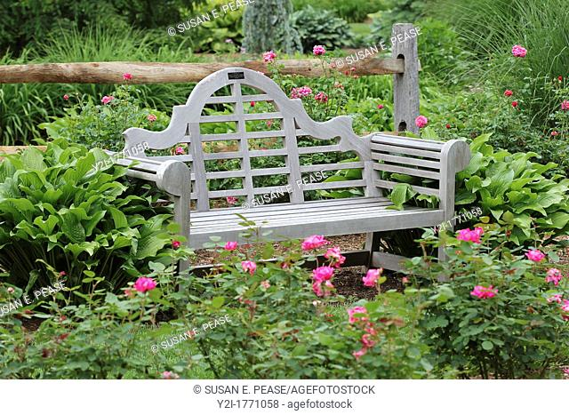 A bench amidst roses at Stanley Park, Westfield, Massachusetts