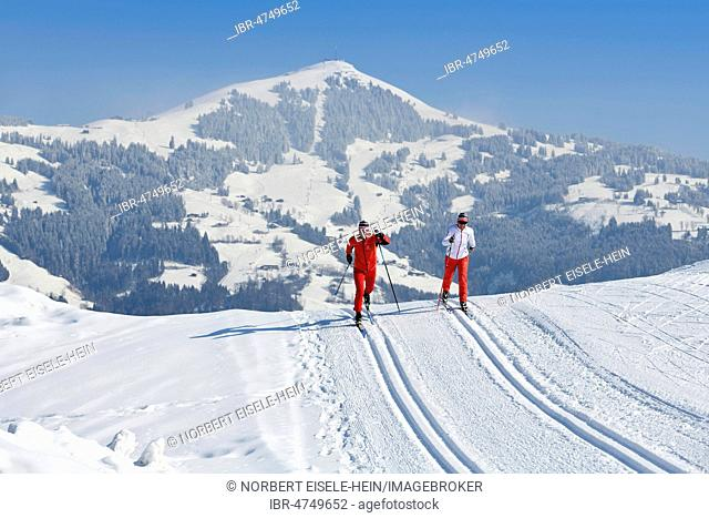 Cross-country skiers on the Penningberg with a view of the Hohe Salve, Hopfgarten, Kitzbühel Alps, Tyrol, Austria
