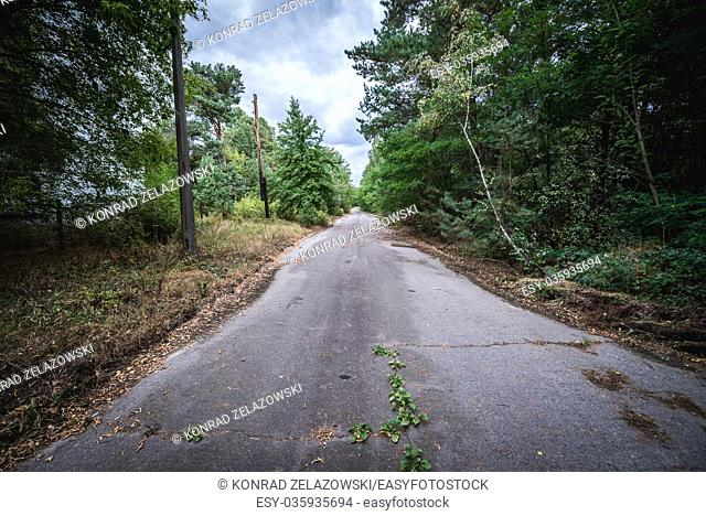 Street in Pripyat ghost city of Chernobyl Nuclear Power Plant Zone of Alienation around nuclear reactor disaster in Ukraine