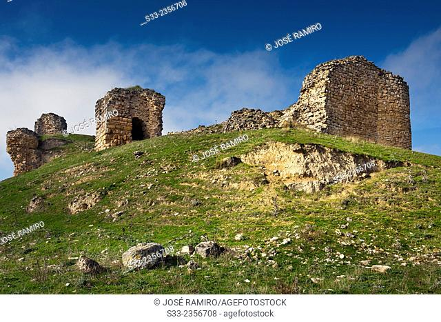 Castle ruins in Cogolludo. Guadalajara. Castilla la Mancha. Spain. Europe