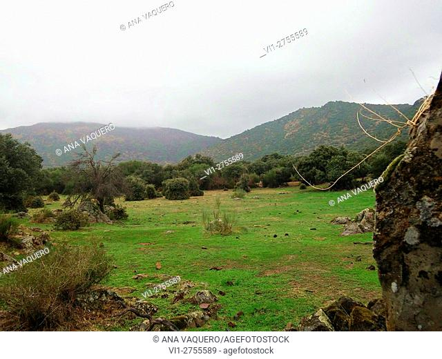 Sierra de Montánchez, from the oaks and olive Almoharín, Cáceres, Extremadura, Spain