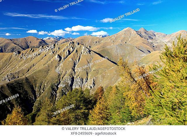 L'Authion, Mercantour National Park, Alpes-Maritimes, France