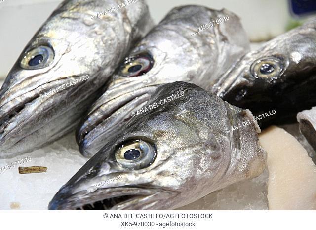 Heads of hakes at a fishmonger's,Burjassot market,Valencia province, Spain