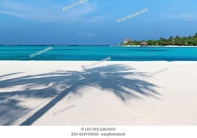 travel, tourism, vacation and summer holidays concept - maldives island beach with palm tree and villa