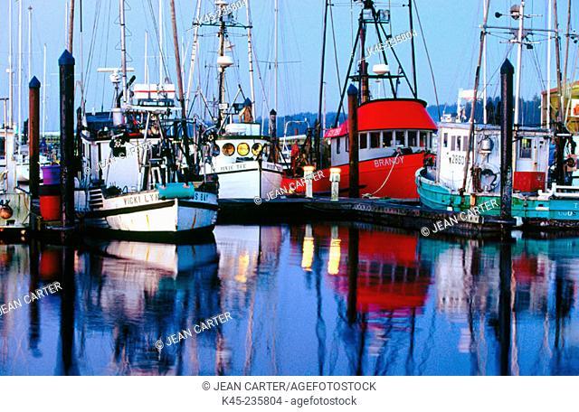 Commercial fishing boats at dawn. Charleston Boat Basin. Oregon. USA