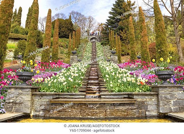Mainau Island, Italian flower-water stairway, Lake Constance, Baden-Wurttemberg, Germany