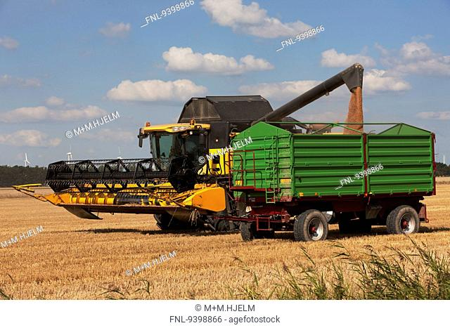 Combine harvester on field, Schleswig-Holstein, Germany