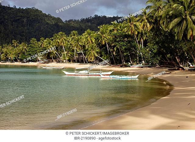 Typical outrigger boats on the sandy beach of Port Barton, Palawan Island, Philippines, Asia