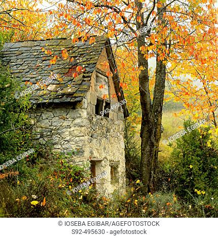 Sin. Huesca province. Pyrenees. Aragon. Spain