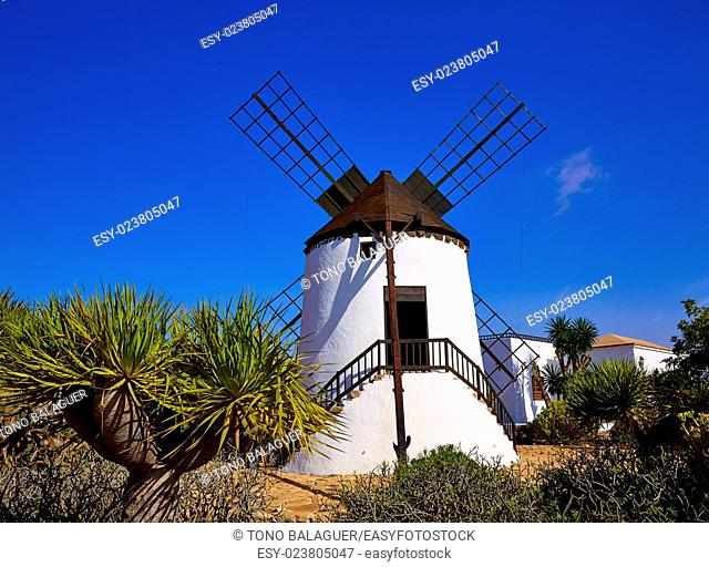 Antigua Windmill in Fuerteventura at Canary Islands of Spain