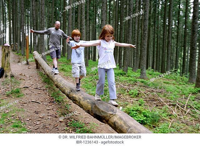 Hiking trail, children adventure path, near Rothaus, Breisgau, Hochschwarzwald, Black Forest, Baden-Wuerttemberg, Germany, Europe