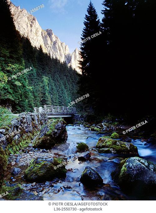 Tatra mountains. Koscieliska valley. Poland