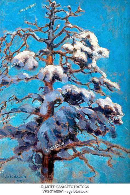 Gallen-Kallela Akseli - Snowy Pine-Tree