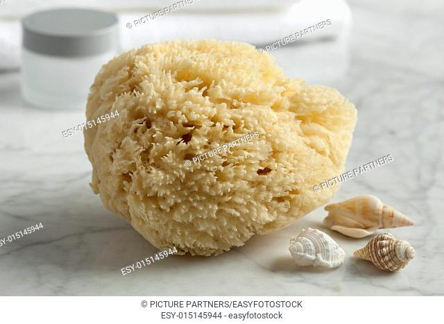 Natural bath sponge for cosmetic use
