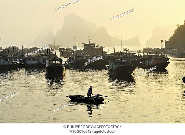 Vietnam, Ha Long bay a World heritage site of UNESCO, fishing boats in the port of Cai Rong