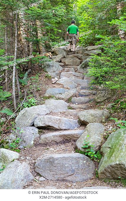 Man climbing a stone staircase along Valley Way in the New Hampshire White Mountains during the summer months