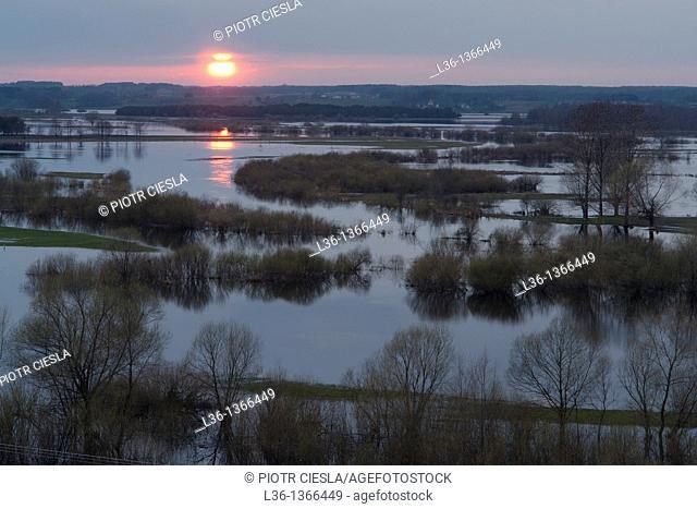 Biebrza National Park Spring floodplain of Biebrza and Narew river Poland - viewed from Strekowa Gora